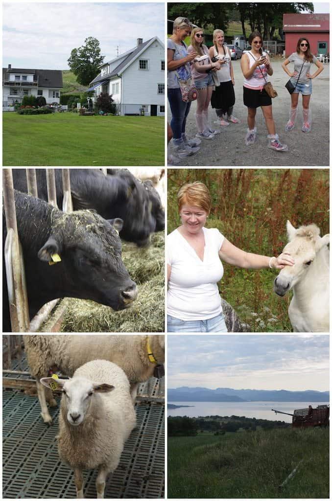 De boeren rondom Stavanger_2