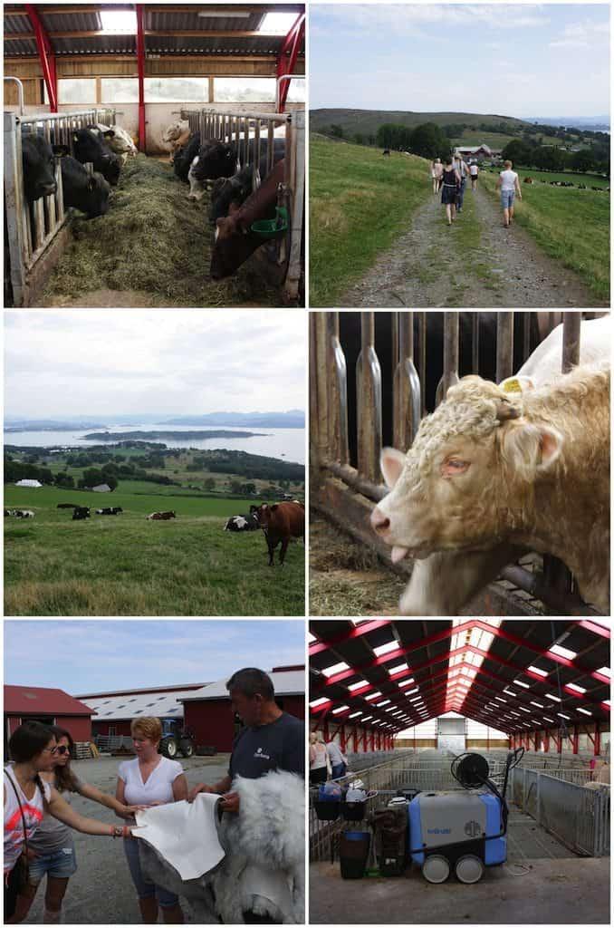 De boeren rondom Stavanger_3