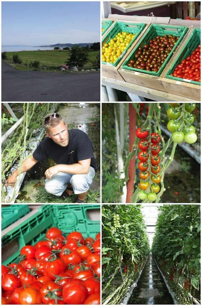 De boeren rondom Stavanger_4