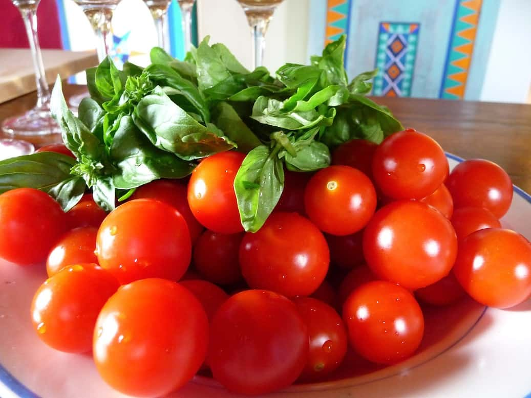 JUST AWAY_toscane_Tomaten en basilicum