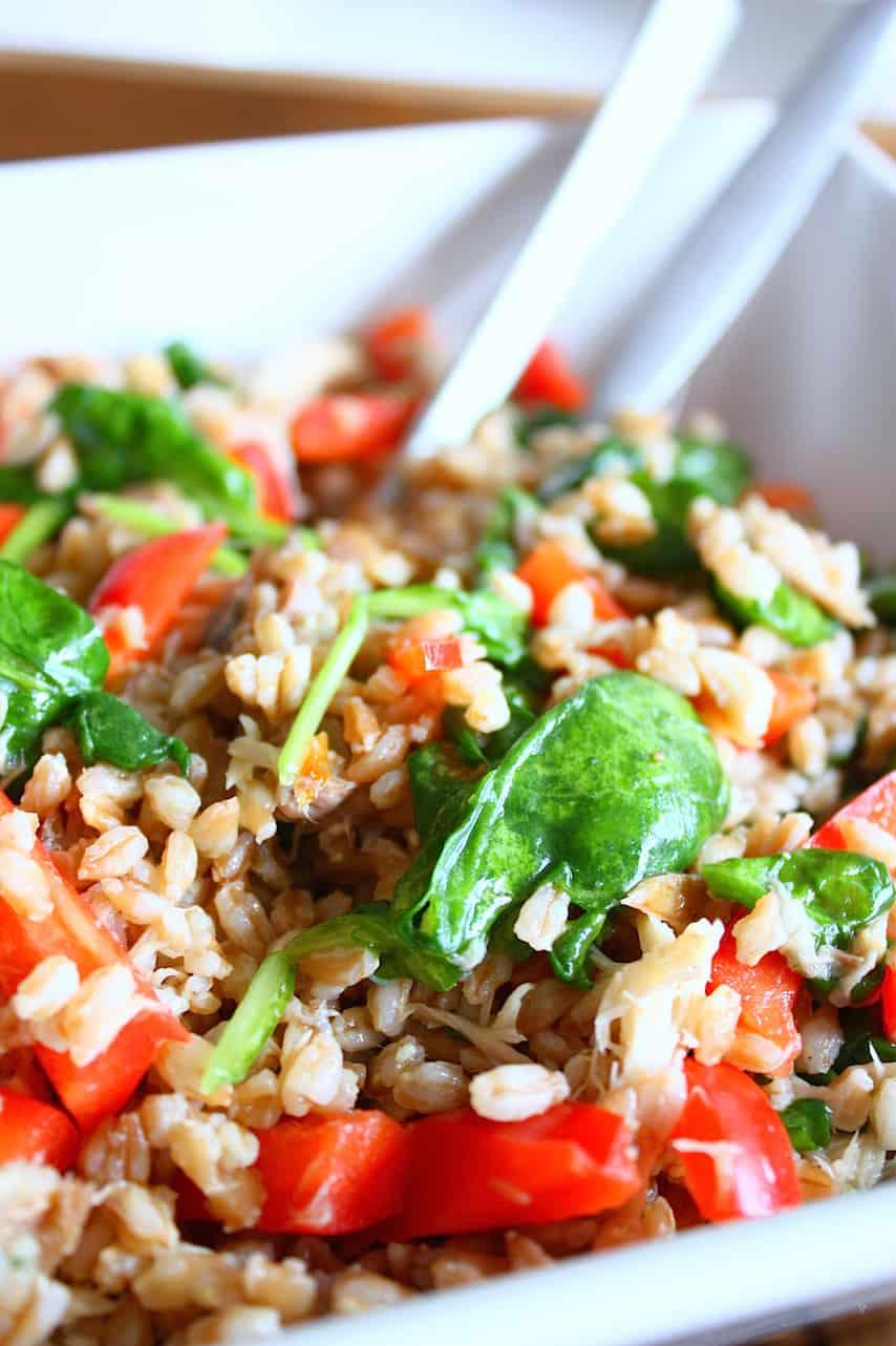 salade-met-farro-en-gerookte-makreel-2